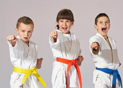 Karate West fundraiser for Discovery Elementary